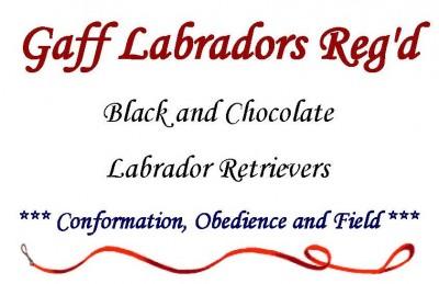 Gaff Labradors Reg logo1
