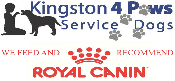 Kingston 4 Paws Service Dogs | Autism Service Dog Training